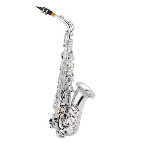 Cheap Alto Saxophone XAL1002