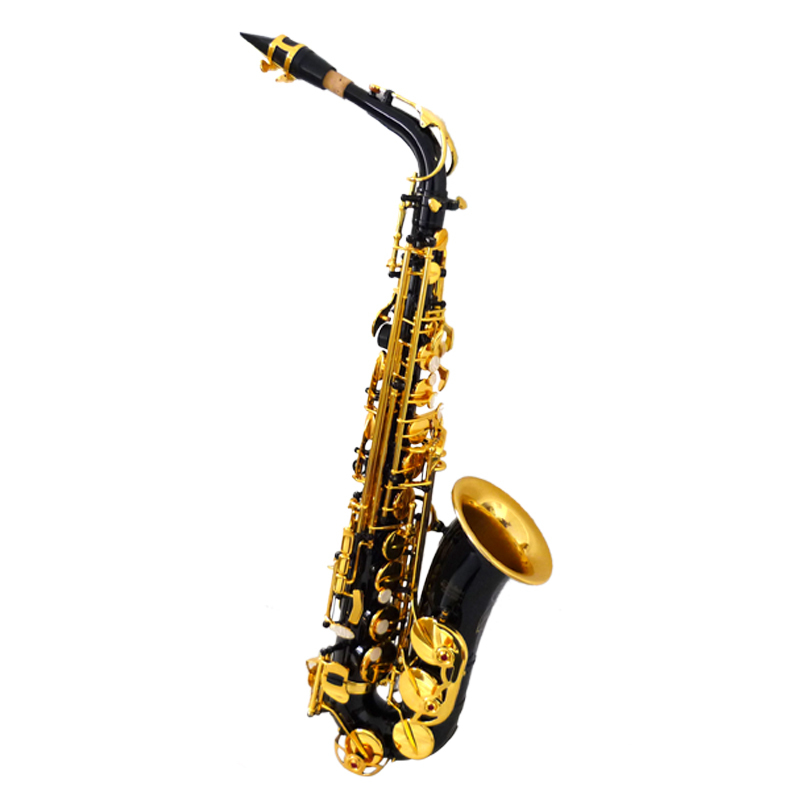 Best Alto Saxophone XAL1100