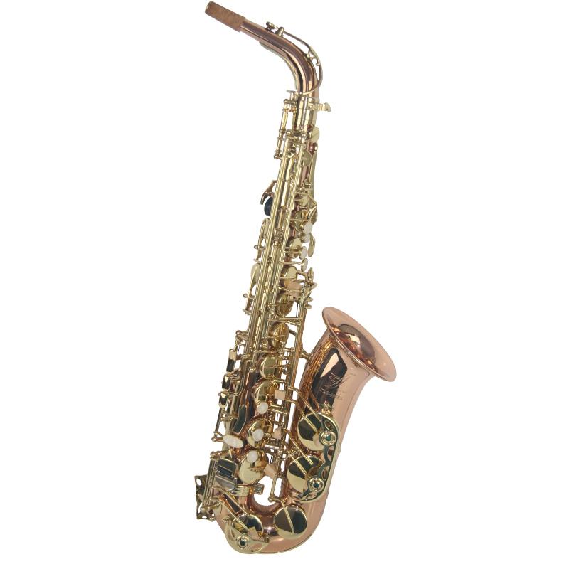 Professional Alto Saxophone XAL1018EX