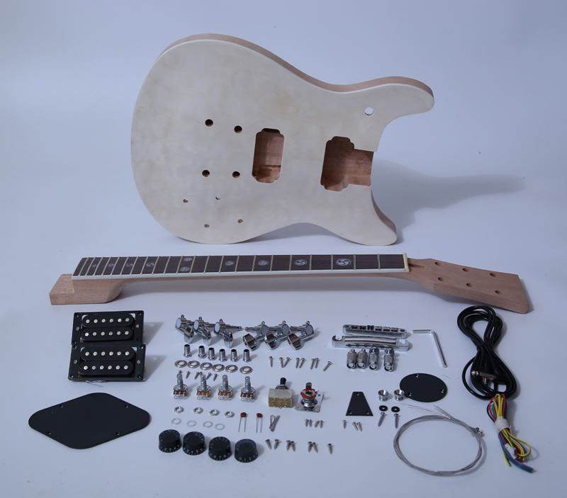 PRS Electric Guitar Kits SNGK003