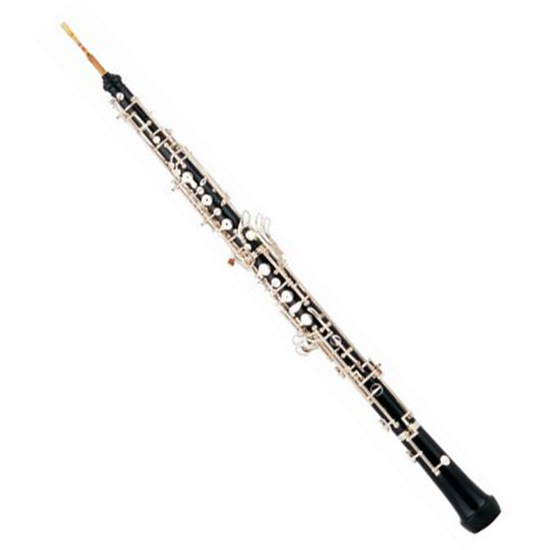 Professional Oboe musical instrument XOB001P