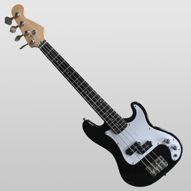 Electric Bass guitar SNEB024 customization