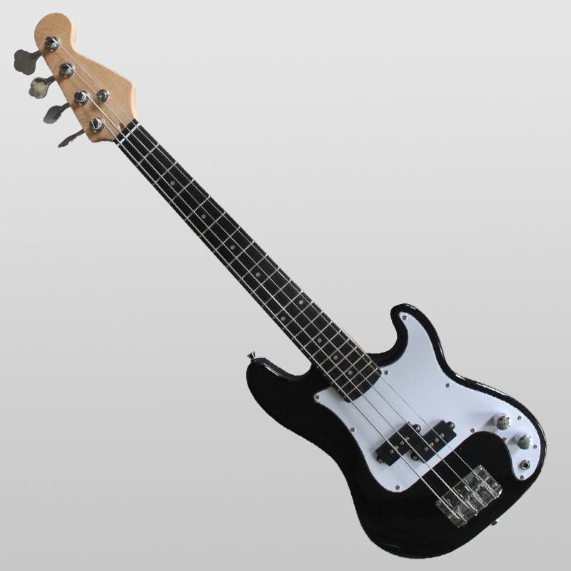 Electric Bass guitar SNEB024 customization