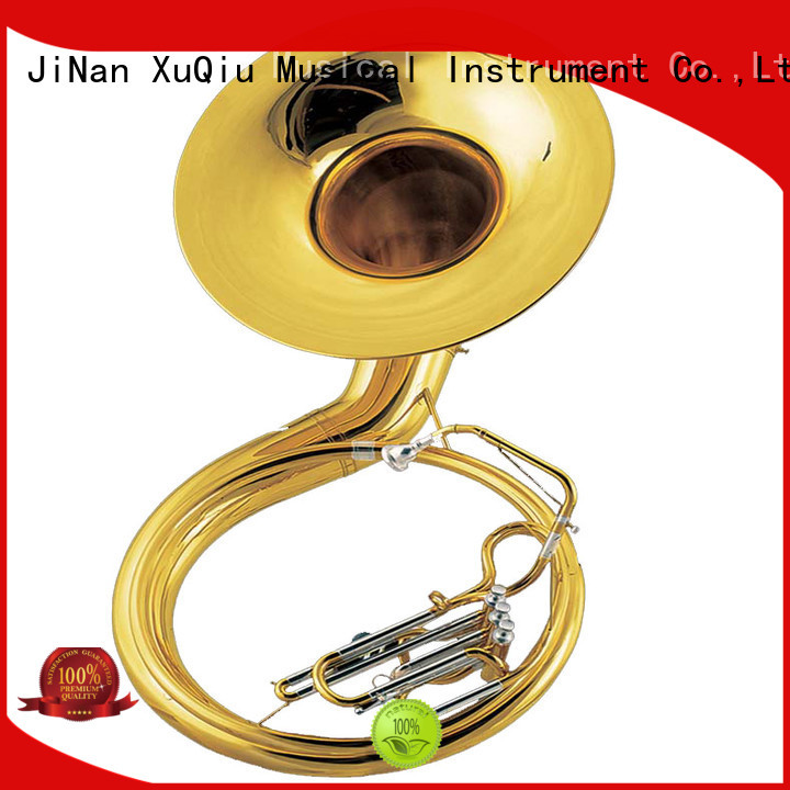 best sousaphone instrument price for kids