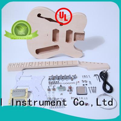 best guitar kits supplier for beginner