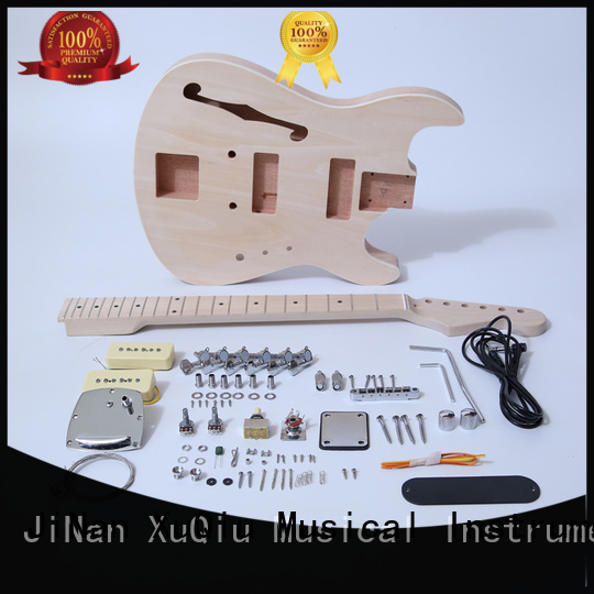 best build your own guitar kit for sale for concert