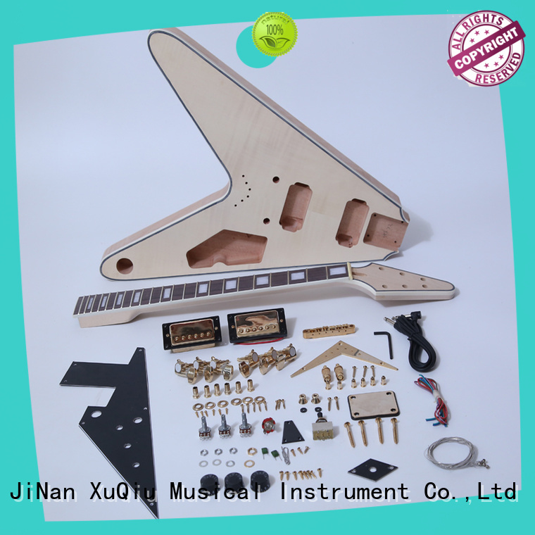 diy rickenbacker guitar kit manufacturer for kids