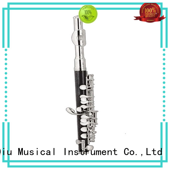 professional flute piccolo for sale for beginner