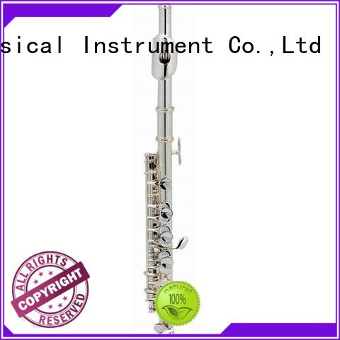 best piccolo musical instrument price for children