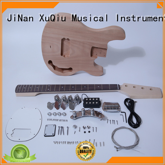 electric acoustic bass kit manufacturer for concert