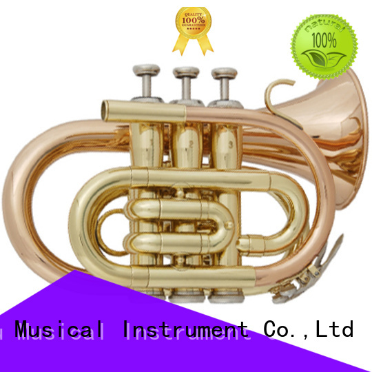 XuQiu student brand new trumpet design for kids
