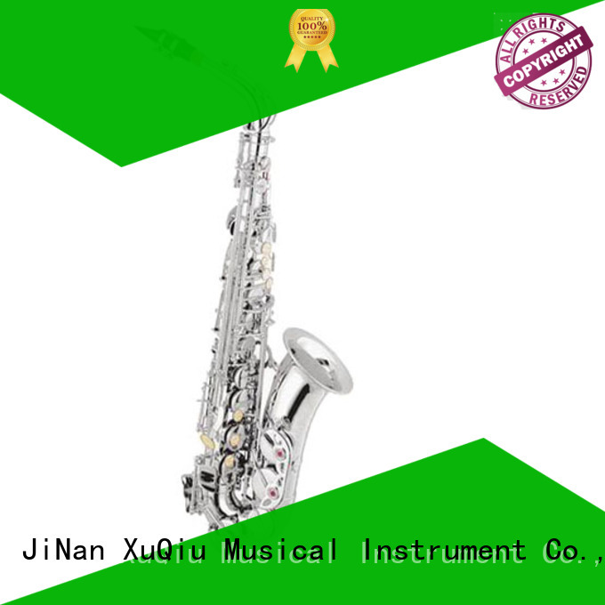 professional student alto saxophone supplier for student