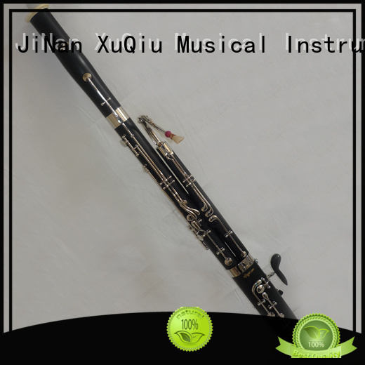 famous bassoon instrument price for beginner