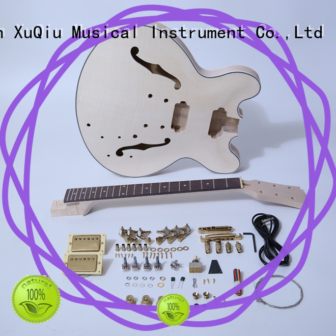 premium do it yourself guitar kits for sale for beginner