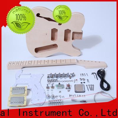 quality rickenbacker style guitar kit handed supplier for beginner
