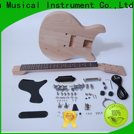 latest bargain musician guitar kit reviews sngk010 company for performance
