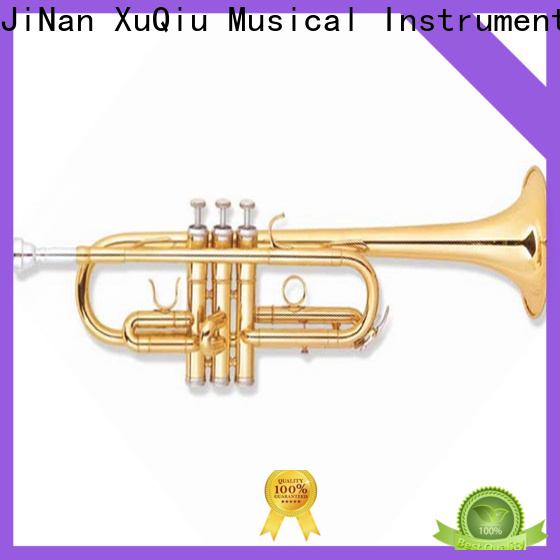 latest beginner trumpet xtr020 for sale for student