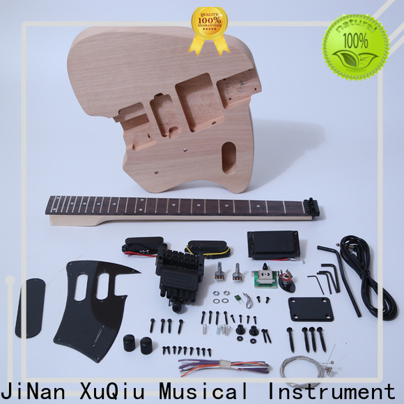 best hollow body bass guitars unfinished for sale for concert
